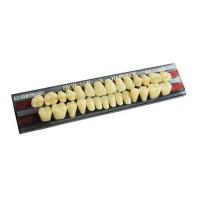 Зубы пластмассовые YAMAHACHI